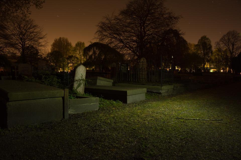 מוות וחשבון נפש. בית קברות צילום: stocksnap.io