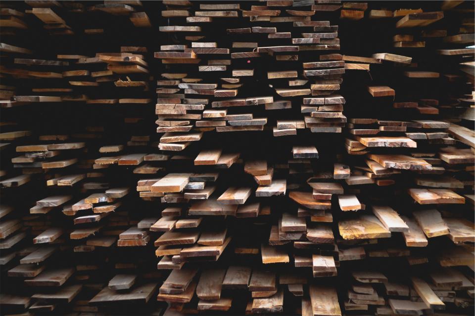 קרש, לא בדיחה. עצים|צילום: StockSnap.io