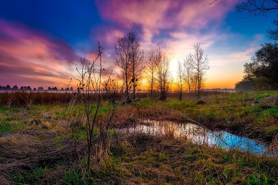 ונהר יוצא מעדן להשקות את הגן | צילום מתוך אתר pexabay