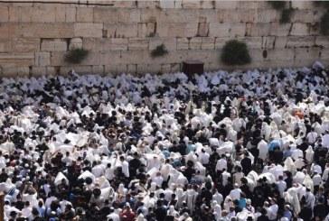 י-ם: 50 אלף איש הגיעו לכותל